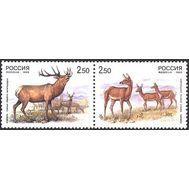 почтовая марка изюбр